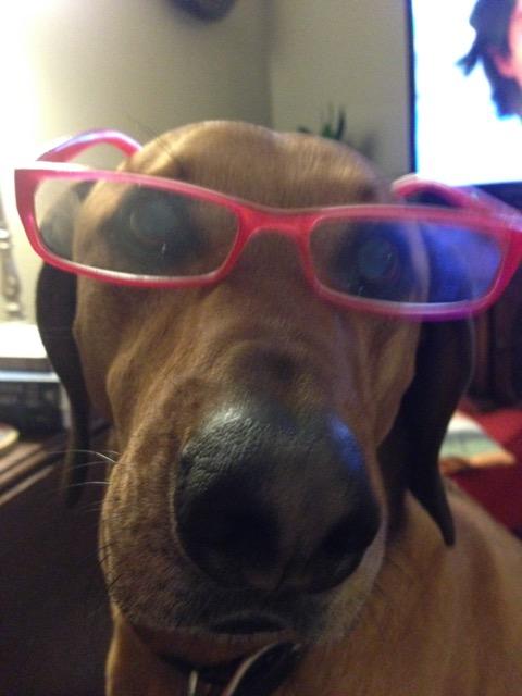 Doug with glasses. Leslie Anne Tarabella